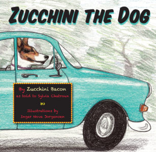 Zucchini The Dog Image