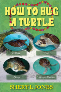 How to Hug A Turtle Image