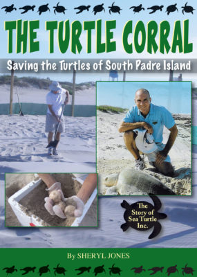 The Turtle Corral: Saving the Turtles of South Padre Island Image